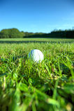 Golf ball on wet lush fairway Stock Photos