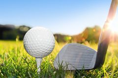 Golf ball on white tee and golf club. Preparing to shot. Green grass golf course. Blue sunny sky Stock Image