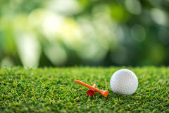 Golf ball and wooden tee Stock Image