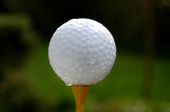 Golf - Ball on yellow tee. Golfball on yellow tee with green background Stock Images