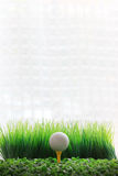Golf ball on yellow tee and white background Stock Image