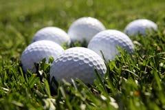 Golf balls. Six golf balls lying on the green grass Stock Photos