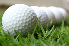 Golf balls. On the green grass Stock Images