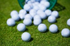 Golf balls basket. Golf ball basket grass equipment leisure activity royalty free stock images