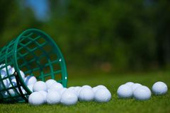 Golf balls basket. Golf ball basket grass equipment leisure activity stock images