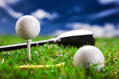 Golf balls and bat. Golf ball on the green grass. Studio Shot Stock Image