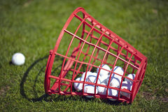 Golf balls bucket on driving range Stock Images