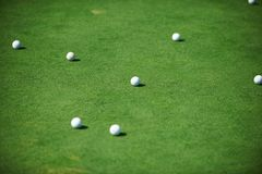 Golf balls close up. White golf balls on green field close up Stock Image
