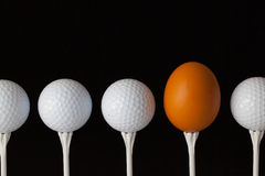 Golf balls and egg on a black glass desk Stock Image