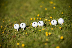 Golf balls. In a green field and their numbers stock images