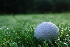 Golf balls on green lawns in beautiful golf courses stock photos