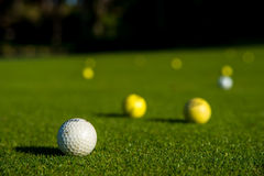 Golf balls. On the lawn Royalty Free Stock Photography