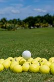 Golf Balls (Medaphore). Yellow Golf Ball at at driving range. White ball set on tee above the rest Royalty Free Stock Photo