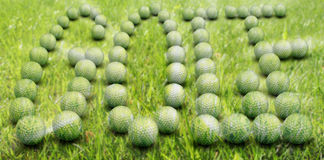 Golf balls in shape of word Stock Images
