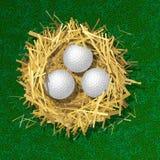 Golf balls in a straw nest Stock Photos