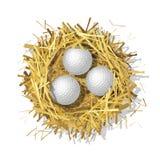 Golf balls in a straw nest Stock Photo