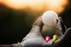 Golf balls and tee in the hands that are worn with white gloves royalty free stock image
