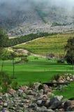 Golf bench landscape Royalty Free Stock Photos