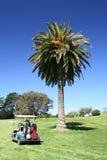 golf cart fotografia royalty free