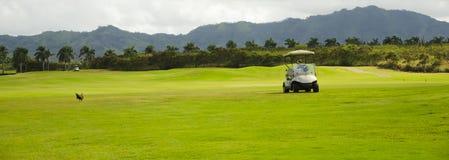 Golf cart. In the Golf Club in Hawaii, Kauai, USA Stock Image