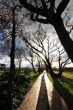 Golf cart path. Pathway for golf carts in Steenberg area of Cape Town Royalty Free Stock Photo