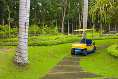 Golf cart on path, pretty green grass Stock Photography