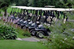 Golf Carts. Parked Golf Carts at the Club House stock photo