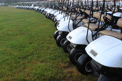 Golf Carts. Row of white golf carts parked on grass field royalty free stock image