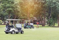 Golf carts parked on fairway in golf course. Golf carts parked on fairway during golfer preparing to drive the golf ball in golf course stock photo