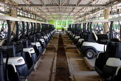 Golf carts parking in the parking area Royalty Free Stock Photography