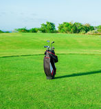 Golf club. Bag with golf clubs Royalty Free Stock Images
