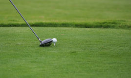 Golf club and ball. Detail of golf with club and ball Royalty Free Stock Image
