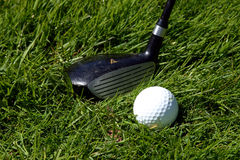 Golf club and ball. A golf club ready to strike a golf ball on the grass Stock Photography