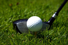 Golf club and ball. A golf club ready to strike a golf ball on the grass Stock Photos