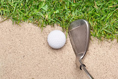 Golf club and ball Stock Image