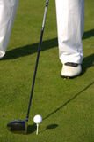 Golf club and ball. Golfer getting ready to strike a white  golf ball teed on the green Stock Photos