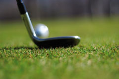 Golf club and ball. With green grass Royalty Free Stock Images