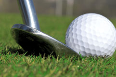 Golf club and ball. With green grass Stock Photography