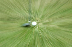 Golf Club and Ball. Real golf club next to a golf ball. Special effect of zoom blur was done in camera, NOT by Photoshop. 12MP camera Stock Images