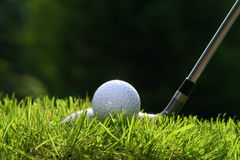 Golf club with ball. On grass stock photos