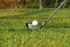Golf club and golf ball close up in golf coures at Thailand. Blurred golf club and golf ball close up in grass field with sunset. Golf ball close up in golf Stock Image