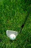 Golf Club and Ball in Grass. Golf club lining up to hit a golf ball in rough grass Stock Photo