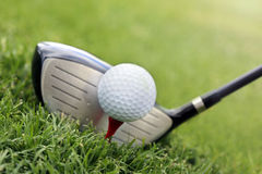 Golf club and ball in grass royalty free stock photos