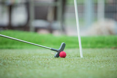 Golf club and ball in grass Stock Photography
