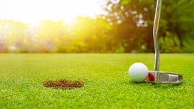 Golf club and ball in grass, Golf club and golf ball close up in grass field with sunset stock image