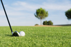 Golf club and ball in grass. Stock Images