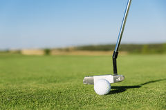 Golf club and ball in grass. Royalty Free Stock Photos