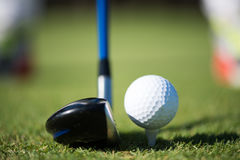 Golf club and ball in grass. On course preparing for shot Stock Images