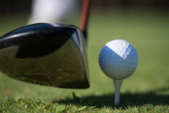 Golf club and ball in grass. On course preparing for shot Royalty Free Stock Photography