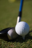 Golf club and ball in grass Stock Images